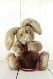 Teddy Bear Bunny With Valentine or Anniversary Love Theme