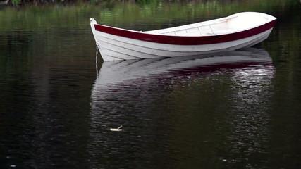 Leaf floating near the row boat