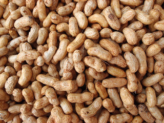 Many peanuts in shells for sale at Farmers Market