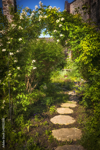 Summer garden and path