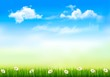 Summer nature background with green grass and sky . Vector.