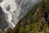 forested slopes near Franz Josef Glacier