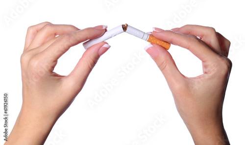 Female hands breaking a cigarette in two isolated on white.