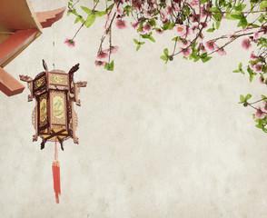 Chinese Lantern on Plum Branch