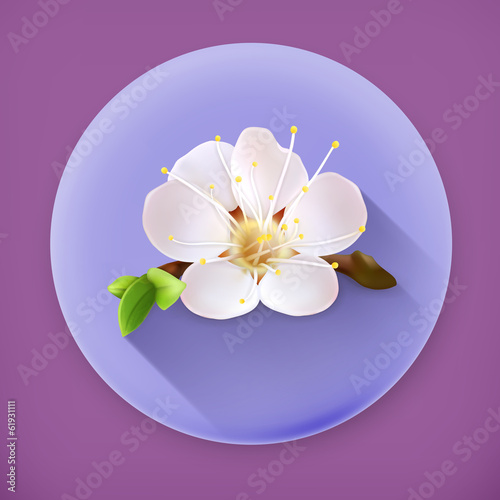 Cherry blossom, long shadow vector icon