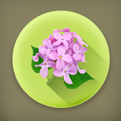 Lilac flowers, long shadow vector icon