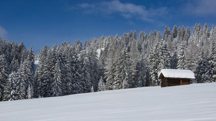 Chalet in Val di Fassa