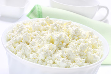 Fresh cottage cheese in bowl