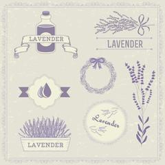 Lavender herb flower, floral vintage background