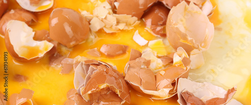 Broken Egg Shells. Close up.