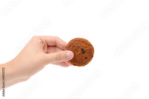 Hand holds oatmeal cookies.