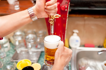 bartender brewing draft beer in pub
