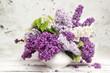 Obrazy na płótnie, fototapety, zdjęcia, fotoobrazy drukowane : Beautiful Bunch of Lilac in the Vase