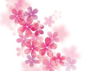 桜_ふわふわ斜め