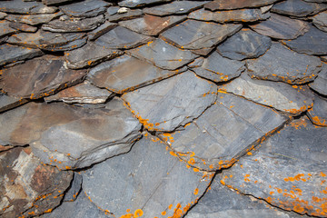 Detail of a Slate Tile Roof
