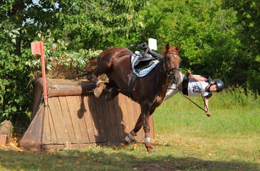 Incident during a sports horseback jump