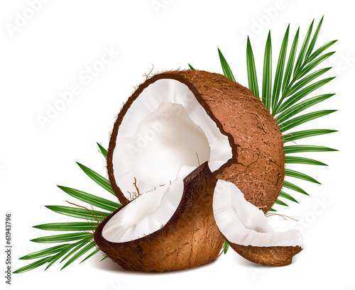 Coconuts with leaves.