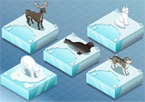 Isometric Arctic Animals on Ice