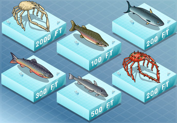 Isometric Fishes on the Sea