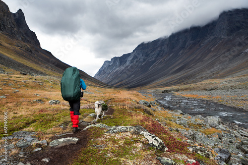 Hiking with Dog in Lapland - Sweden