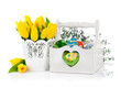 Easter eggs in basket with spring flowers. Isolated on white