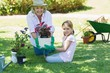 canvas print picture - Grandmother and granddaughter engaged in gardening