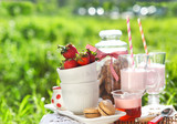 Spring picnic with strawberry