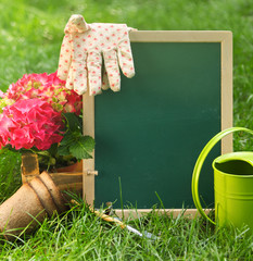 Beautiful spring flowers and blackboard blank on the green grass