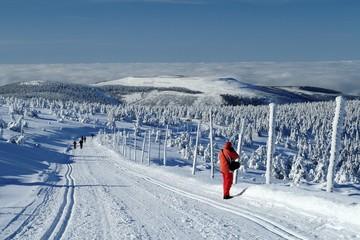 Winter landscape of Jeseniky Mountains