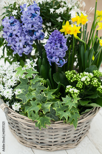 basket with flowers in spring.
