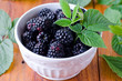 Fresh blackberries in a bowl