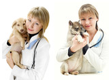 Veterinarian and Puppy