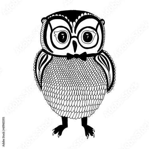 Owl illustration - 61960393