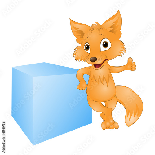 young fox on a white background