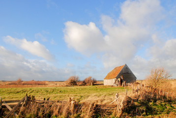 Old shed in Texel landscape