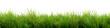 canvas print picture - Grass