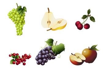Verschiedene Sorten von Obst