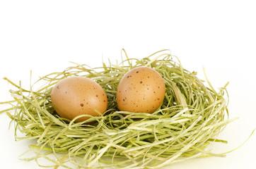 Braune gepunktete Eier im Nest