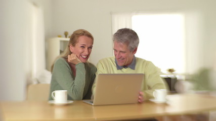 Cute old couple sitting at desk with laptop