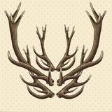 Hipster vintage background with deer antlers