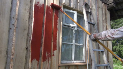 painting old farm house wall with paint roller