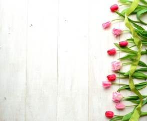 Pink tulips with yellow green ribbon