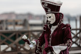 Mask at the Venice Carnival 2014