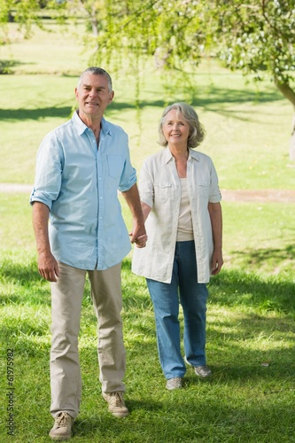 Loving mature couple holding hands at summer park