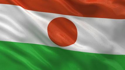 Flag of Niger waving in the wind - seamless loop
