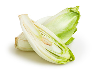 chicory isolated