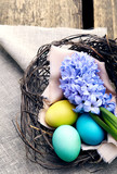 Colorful easter eggs  with hyacinth  in a nest on wooden backgro