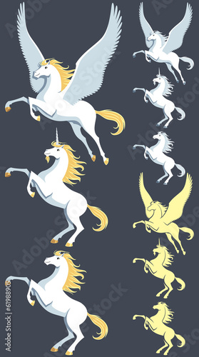 Pegasus Unicorn Stallion