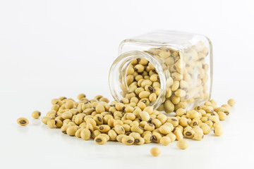 Bottle full of Soybeans