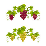 grape vine monogram